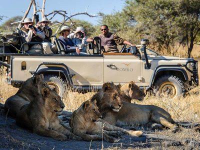 Botswana Uncharted